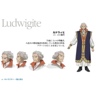 Ludwigite