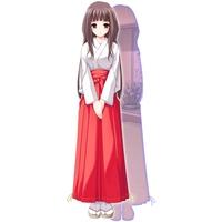 Image of Hayato Sakurami