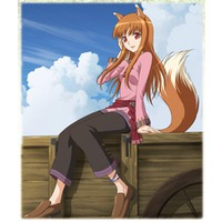 Image of Spice and Wolf II