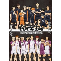Haikyu!! Karasuno High School VS Shiratorizawa Academy