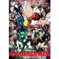 Image of One Punch Man (Series)