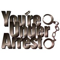 Image of You're Under Arrest! (Series)