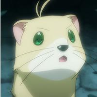 Profile Picture for Yuuno Scrya (Ferret)