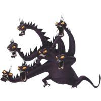 Image of Hydra