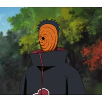 Image of Tobi