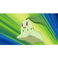 Image of Chikorita