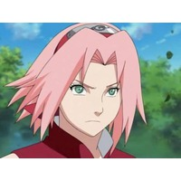 Profile Picture for Sakura Haruno