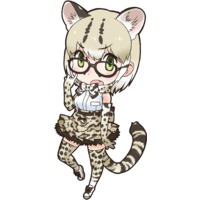 Image of Margay