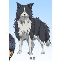Image of Yoshiro