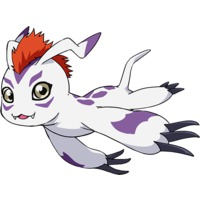 Image of Gomamon