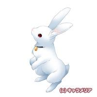 Profile Picture for Mashiro