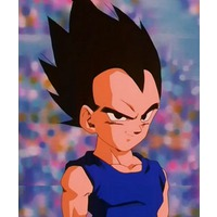 Image of Vegeta Jr.