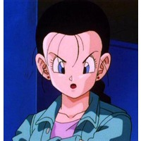 Image of Videl (adult)