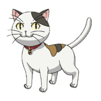 Image of Tama