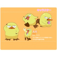 Image of Kamo