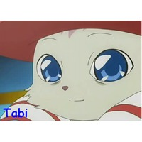 Image of Tabi