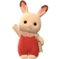 Image of Chocolate Rabbit Baby