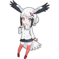 Profile Picture for Oriental Stork