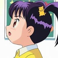 Image of Lemon Giboshi