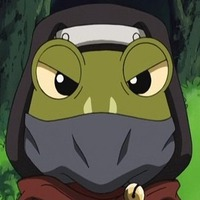 Image of Frog Ninja
