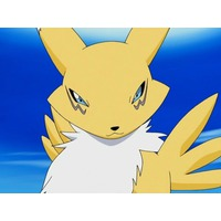 Image of Renamon