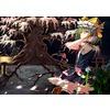 https://rei.animecharactersdatabase.com/uploads/guild/gallery/thumbs/100/25241-304359809.jpg